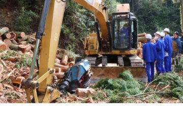 スマート林業の取り組み、そして林業就業者への支援が増しているそうです♪